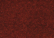 premium quality pure wool carpet Supertuft Carpet whenever right now